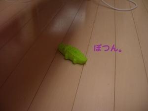 Imgp2712