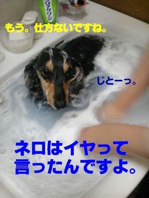 100508_224426